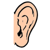 Ear Picture