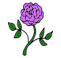 Purple Rose Picture