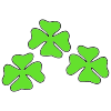 Clovers Picture