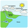 Water Cycle Picture