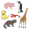 Animals Picture