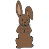 Chocolate Bunny Picture
