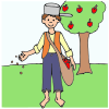 Johnny Appleseed Picture
