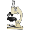 Microscope Picture
