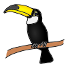 Toucan Picture